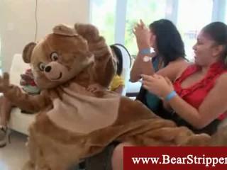 CFNM Танцующего Медведя Секс Зачистки Партии